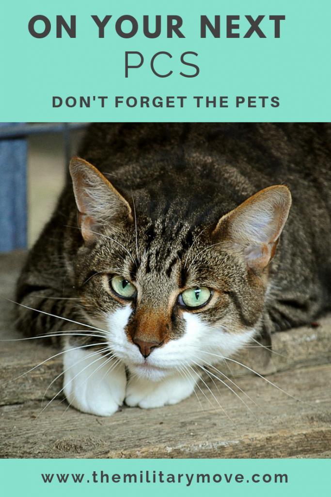 Pets and PCS