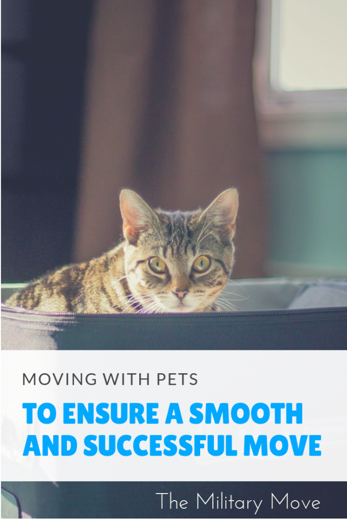 Tips for a successful move with pets